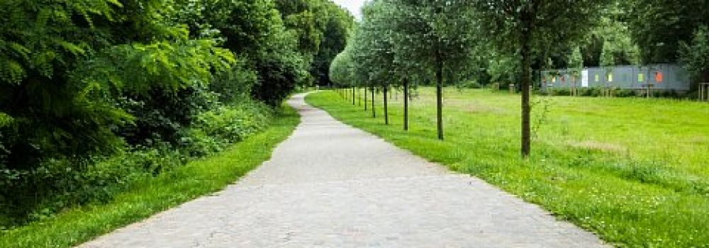 Wandelweg Makro 6 2016 001,medium 1466609865